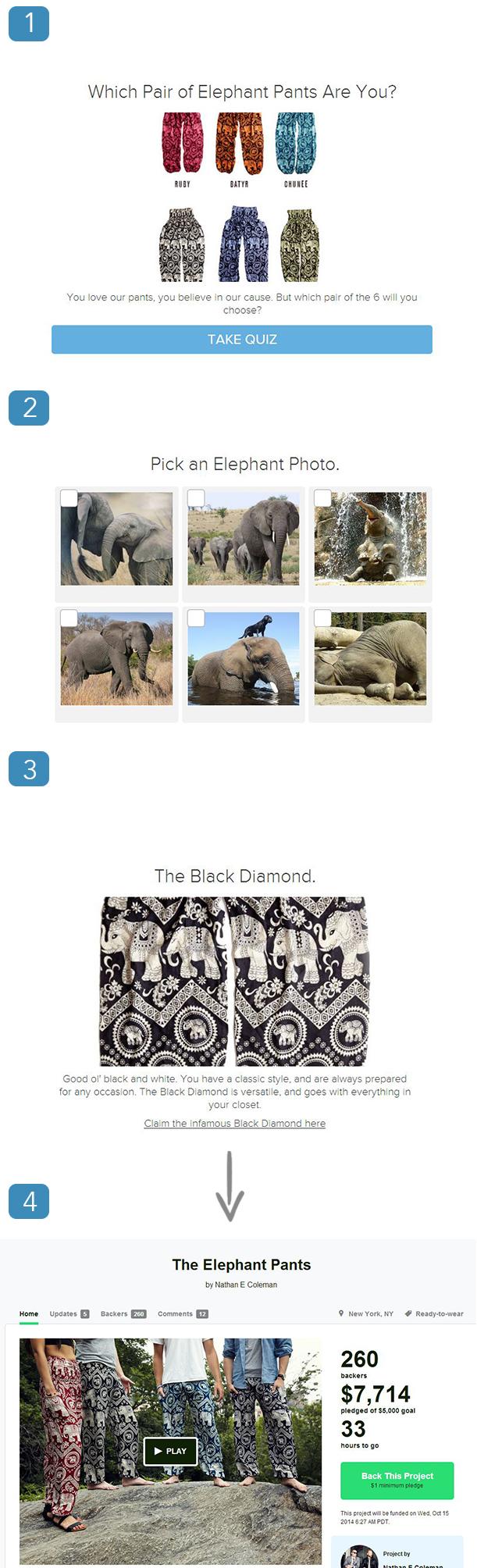 elephant demo