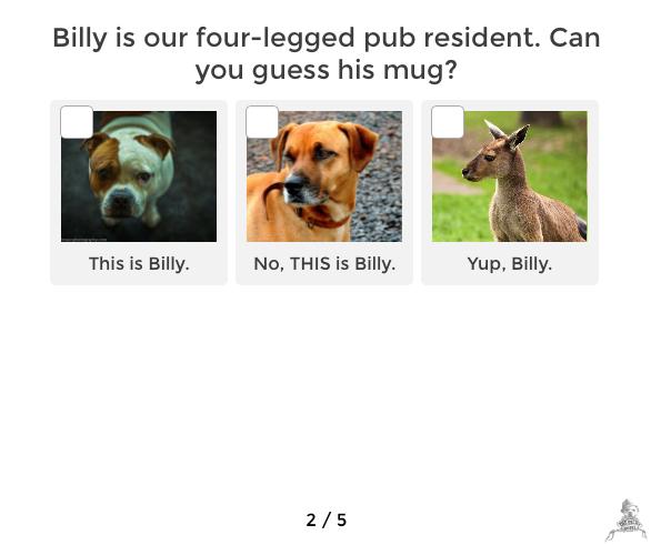 Q2-Billy