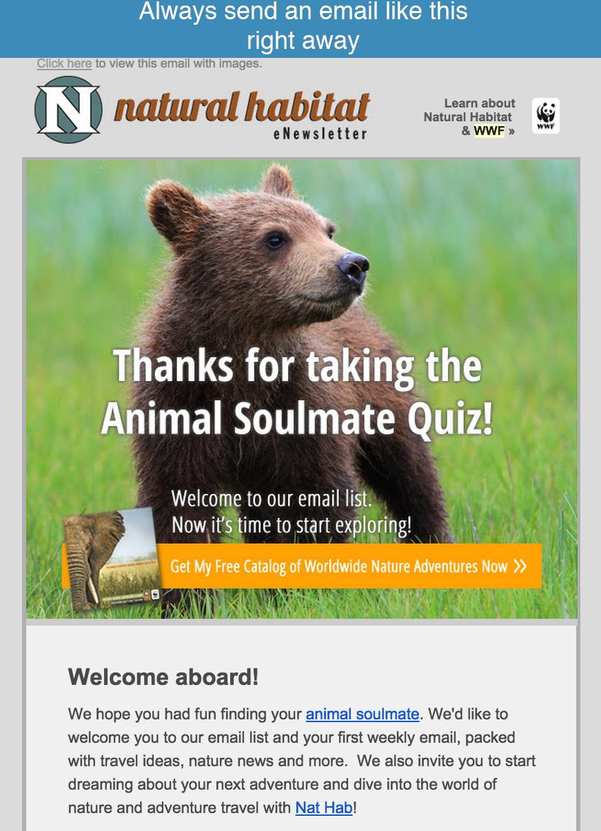 quiz email autoresponder