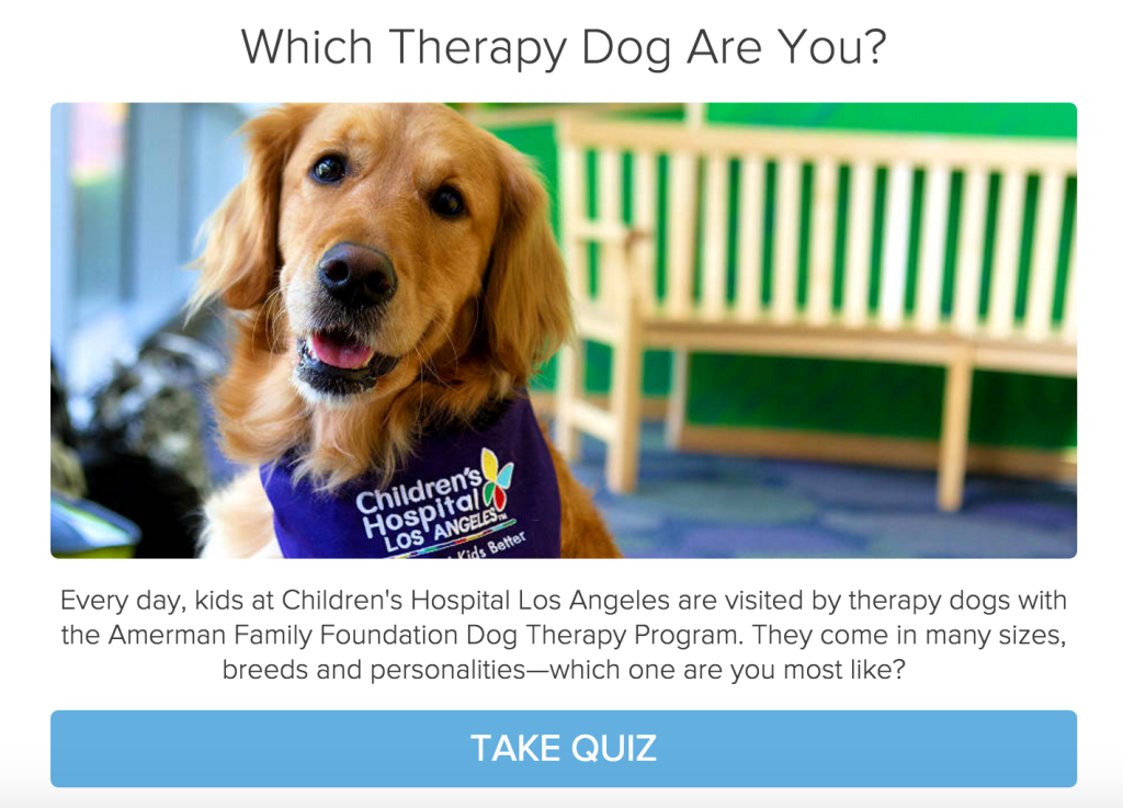 dog type quiz