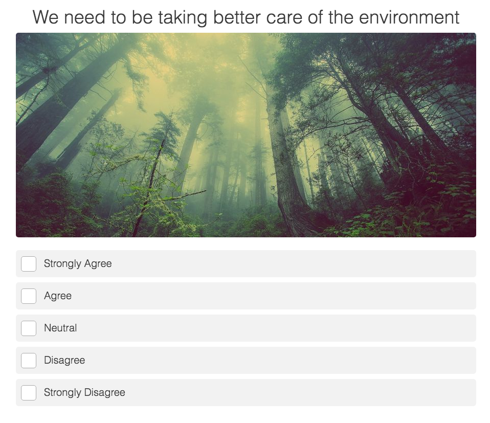 quiz question with how strongly you agree to the statement that we need to take care of the environment