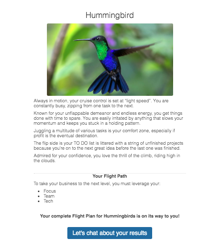 hummingbird in flight and quiz results